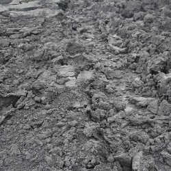 尔林兔 2#水采煤泥